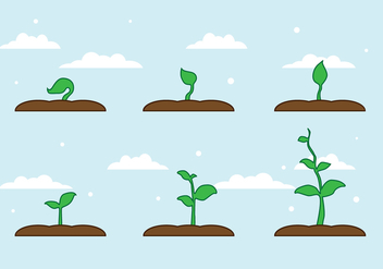 FREE PLANT GROWTH VECTOR - vector gratuit #317701