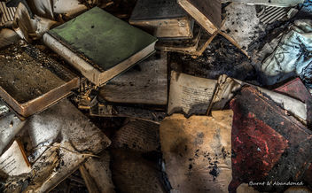 Books Destroyed - Free image #318701