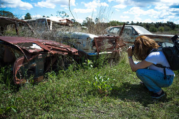 Cars of Decay - Free image #320321