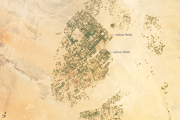 Agricultural Fields, Wadi As-Sirhan Basin, Saudi Arabia - бесплатный image #320951