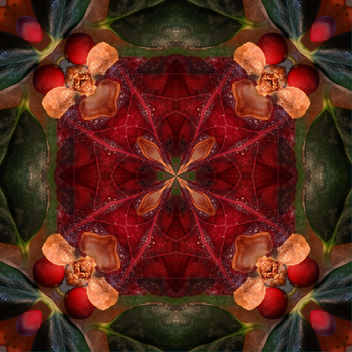 Holiday Season Kaleidoscope - Free image #321361