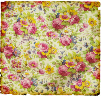 Chintzy - Kostenloses image #321961