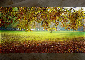 colorful of autumn - image #323541 gratis