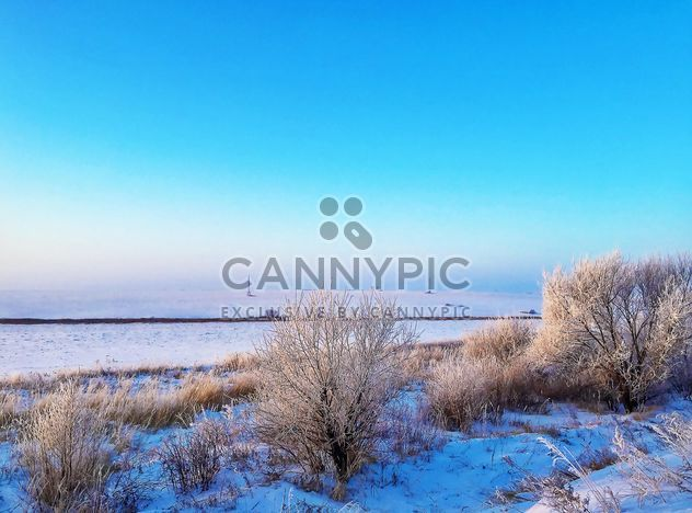 Field covered with snow - Free image #326511