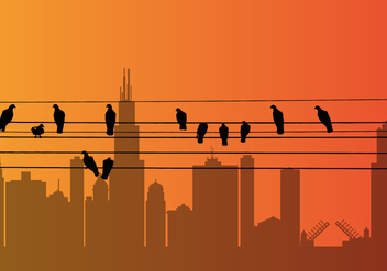 Vector Bird on a Wire - vector gratuit #327601