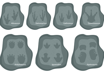 Dinosaurs Footprints - Free vector #327951