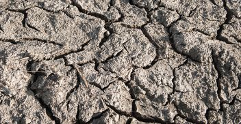 Dry cracked soil - Free image #328161
