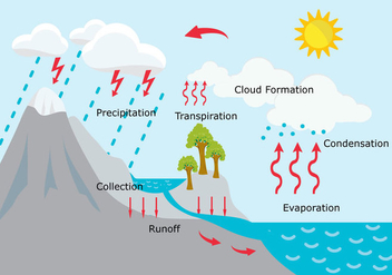 Water Cycle Illustration - vector gratuit #328231