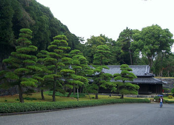 Japan (Tokyo) Imperial Palace Garden - Kostenloses image #328401