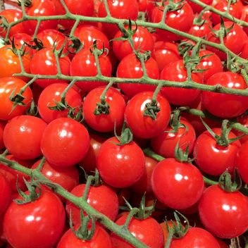 Fresh cherry tomatoes - image gratuit #329111