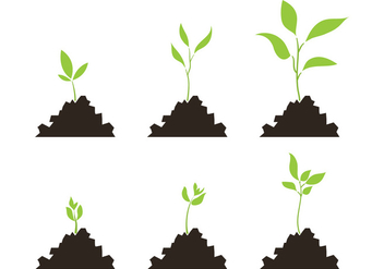 Vector Set of Plant Growth Scale - vector gratuit #329351