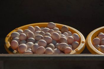 Duck eggs in yellow buckets - image #329671 gratis
