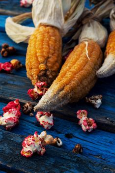 Close-up of corn cobs and popcorn on blue wooden background - бесплатный image #330451