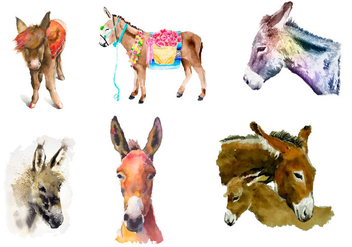 Donkey painted with watercolor - Free vector #330461