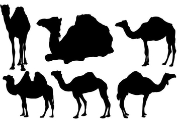 Free Camel Silhouette Vector - Free vector #333481
