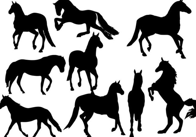 Free Horses Silhouette Vector - Kostenloses vector #333491