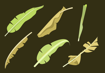 Banana Leaf Vectors - бесплатный vector #335761