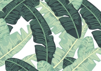 Banana Leaf - vector #337711 gratis