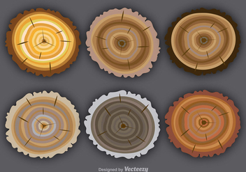 Flat colorful tree rings - vector gratuit #337721