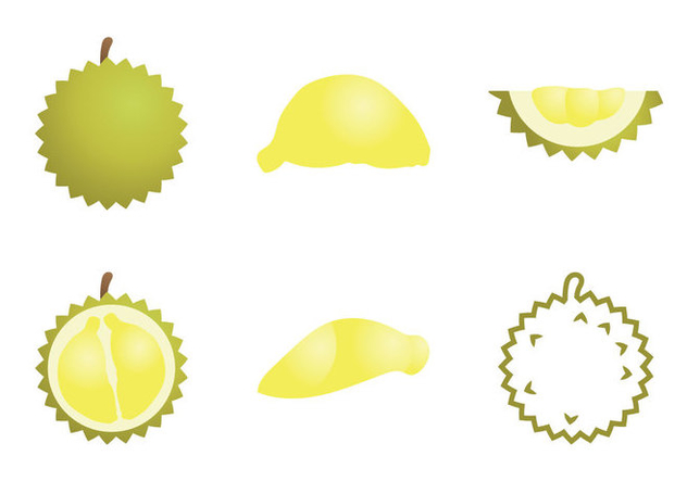 Free Durian Vector Illustration - Free vector #339401