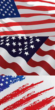 USA Flag Designs - Free vector #341101