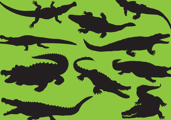 Gator Silhouettes - Free vector #342231