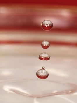Background of water drops closeup - image #344631 gratis