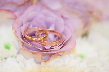 Wedding rings on purple flower - бесплатный image #345011