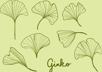 Hand Drawn Ginko Leaves - vector gratuit #345671