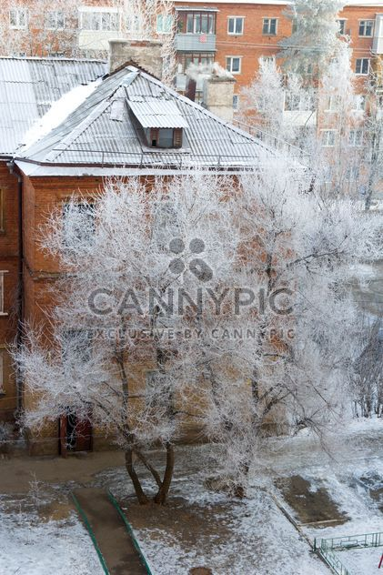 View on houses and trees in winter - Free image #347001