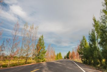 Country road with beautiful nature - бесплатный image #347201