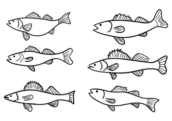 Walleye Vector - vector #348241 gratis