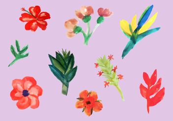 Free Tropical Flowers Vector Pack - Kostenloses vector #351871