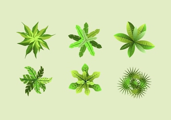 FREE TREE TOPS VECTOR - vector gratuit #353341