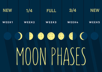 Moon Phase - Free vector #355651