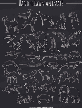 Chalk hand-drawn animals set - vector gratuit #356441