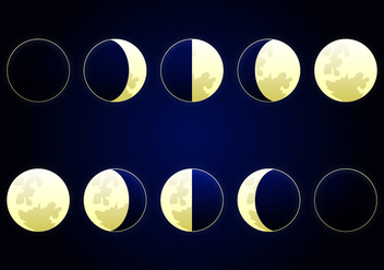 Moon Phase Vector Illustration - Free vector #356731