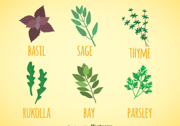 Herbs And Spices Colors Icons Vector - Kostenloses vector #357831