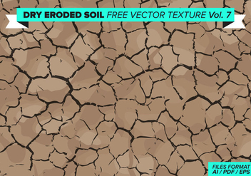 Dry Eroded Tree Free Vector Texture Vol. 7 - Kostenloses vector #358781