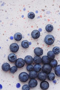 Fresh ripe blueberries - Kostenloses image #359191