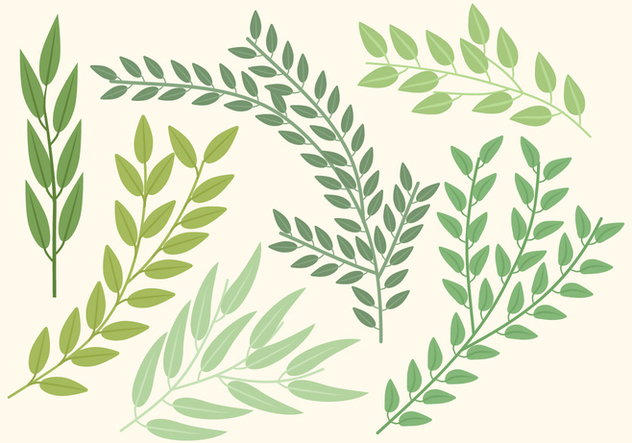 Vector Branches - Free vector #360431