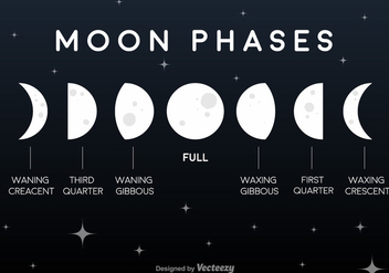 Vector Flat Moon Phases Icons - бесплатный vector #361151