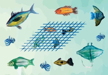 Free Watercolor Fish Vector Pack - vector gratuit #364741
