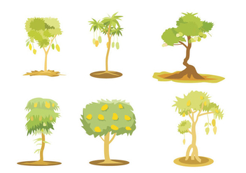 Mango Tree Illustration Vector - vector gratuit #365731