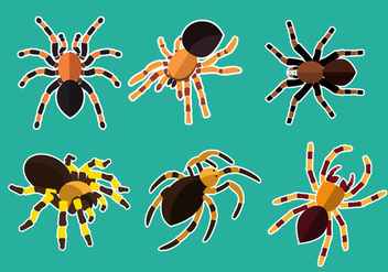 Tarantula Illustration Vector - Kostenloses vector #365881