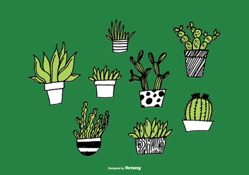 Hand Drawn Succulent Planter Vectors - Free vector #368451