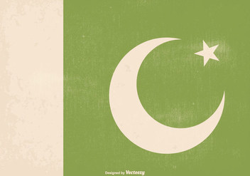 Awesome Retro Old Pakistan Flag - Free vector #369731