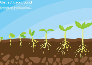 Plant Grow Up Concept Vector - бесплатный vector #370151