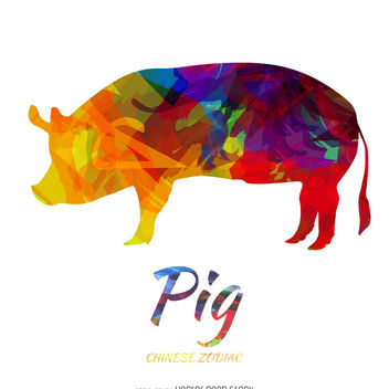 Colored Pig - Chinese Zodiac - Free vector #373981