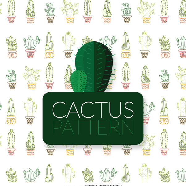Thin line color cactus pattern - vector gratuit #373991